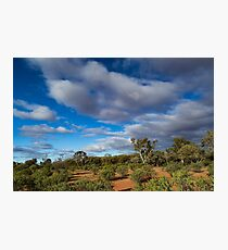 Colours of the Outback - Kilcowera Station Photographic Print
