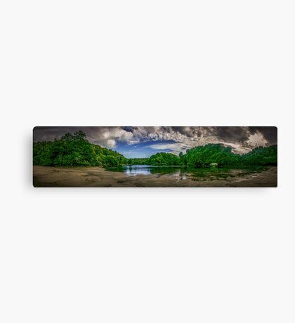 Waitakere River Canvas Print