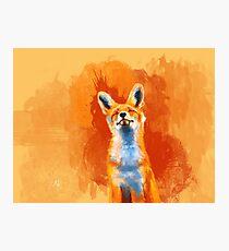 Happy Fox - fox illustration, animal art, happiness Photographic Print