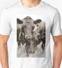 Friendly Cows T-Shirt