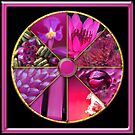 Magenta Colour Wheel by Jane Marin