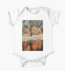 Willow Reflection Kids Clothes