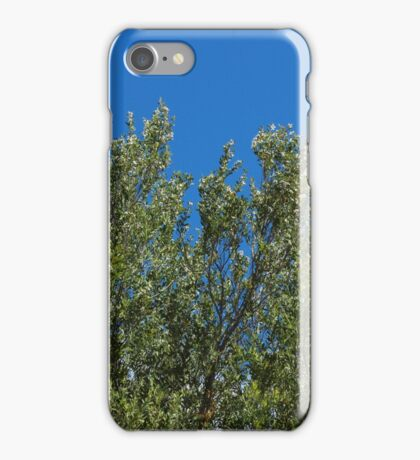 Winda Woppa Walk Tree  iPhone Case/Skin