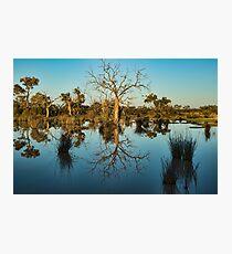 Outback Beauty - Kilcowera Station Photographic Print