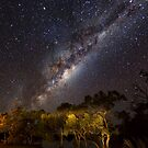 The Milky Way - Kilcowera Station by Malcolm Katon
