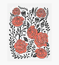 Orange Garden Photographic Print