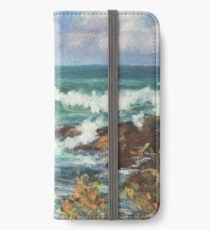 View from Kenny Walk at Nobby Head iPhone Wallet/Case/Skin