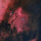 Pelican Nebula (LHaRGB) by Jeff Johnson