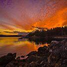 Endless Sunset by Shari Galiardi