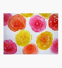 Rose galore Photographic Print