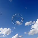 Bubble by David Tovey