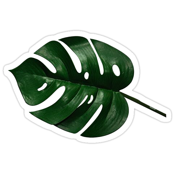 Palm Leaf Sticker