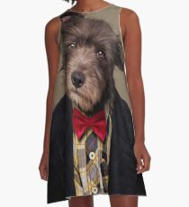 Shelter Pets Project - Ombré A-Line Dress