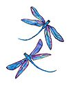 Dragonfly Dance by Linda Callaghan