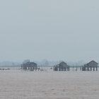 Fog on the Irrawaddy 1 by Werner Padarin
