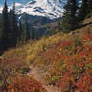 Autumn view of Mount Rainier by Harv Churchill