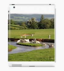 Landscape with cows (France) iPad Case/Skin