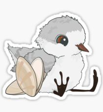 Piper - Baby Sandpiper with Shells Sticker