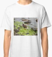 Kelp goose Classic T-Shirt