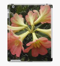 Floral Bouquet, Wollongong, Australia. iPad Case/Skin