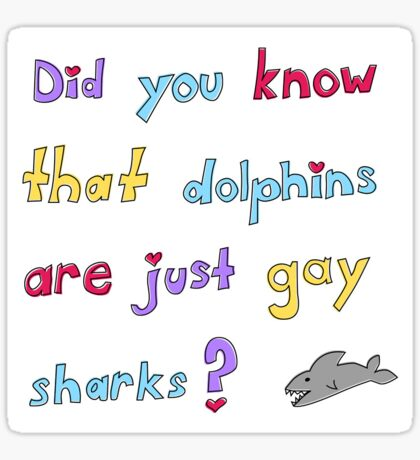 Dolphins are Just Gay Sharks Sticker