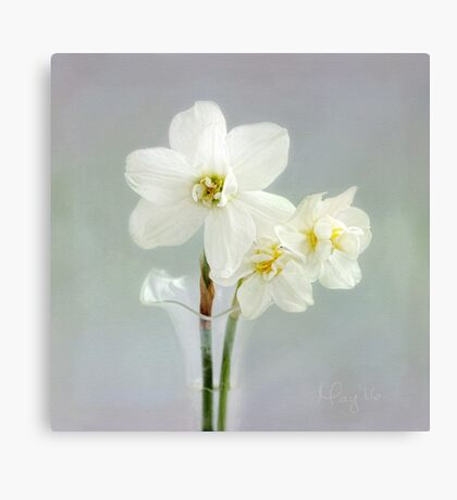 The Poet's Daffodils Canvas Print