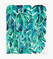 Split Leaf Philodendron – Teal Photographic Print