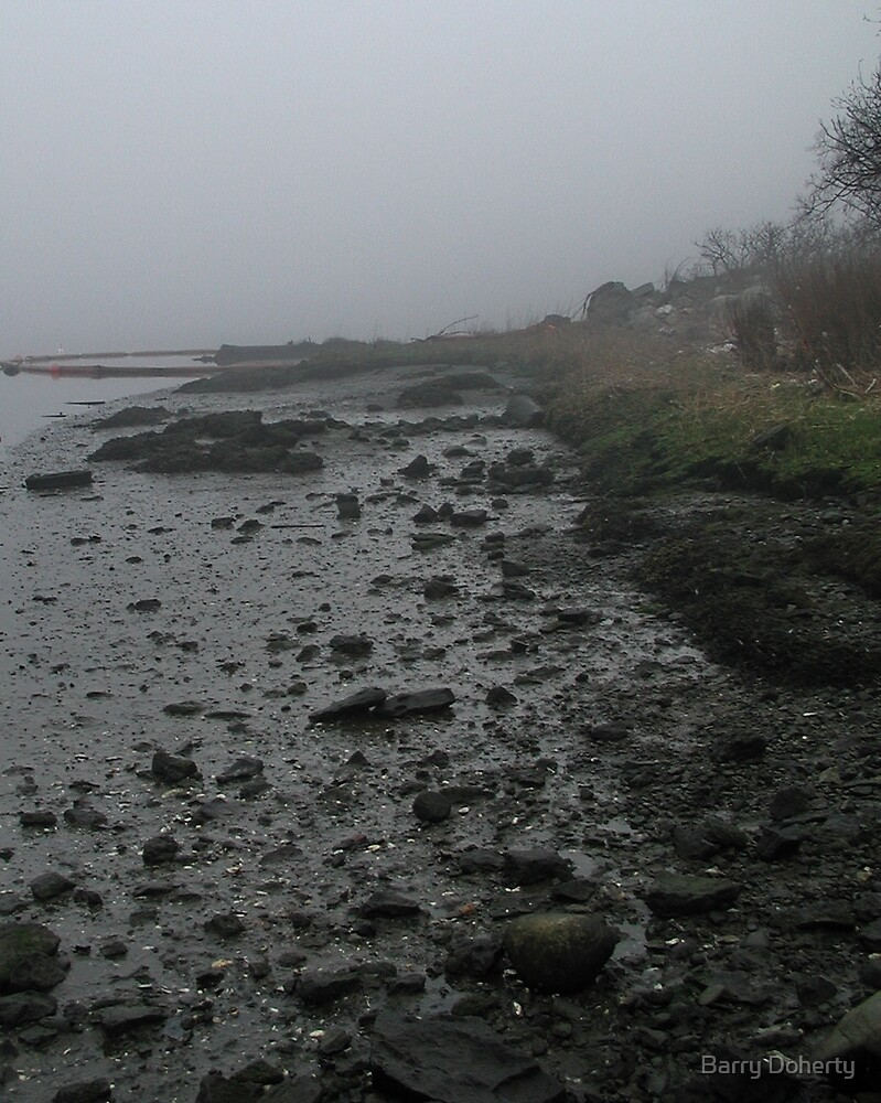 Low Tide by Barry Doherty