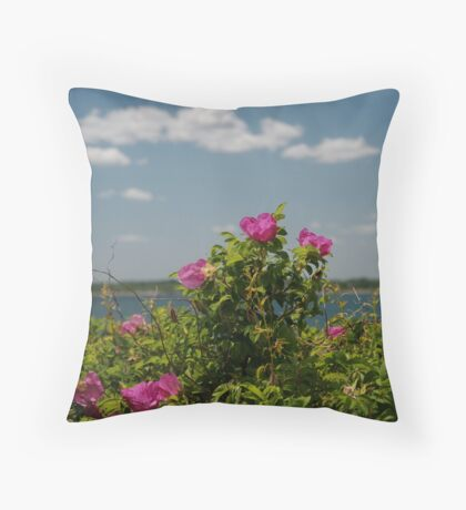 Against the Sky Throw Pillow