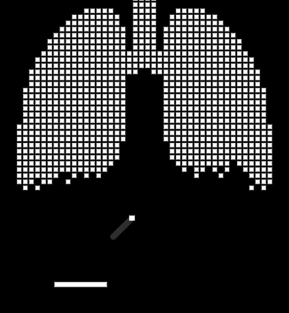 Pixel Lungs by HeadOut