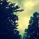 Summer Storm by Kiwi-Fur