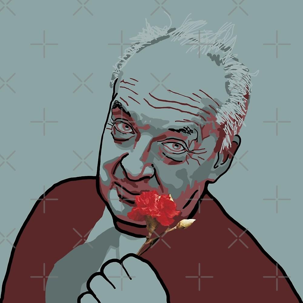 Vladimir Nabokov by savantdesigns