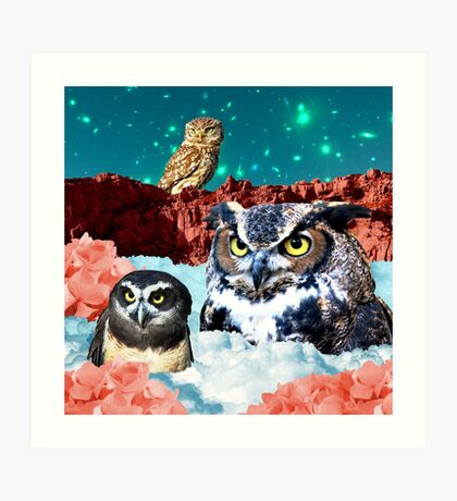 Kindly Owl Gods of the Red Mesa Art Print