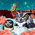 Kindly Owl Gods of the Red Mesa by dogmycat