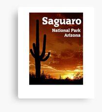 Saguaro National Park, Arizona Canvas Print
