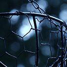 Chicken Wire Basket by Gabrielle  Lees