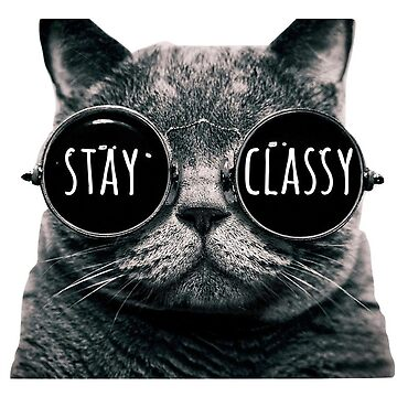 Stay Classy Cat Sunglasses by annmariestowe