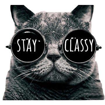 Stay Classy Cat Sunglasses de annmariestowe