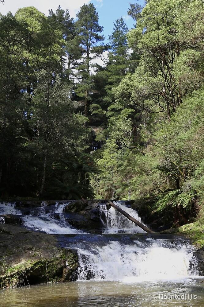 Morwell River Falls by HauntedHills