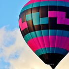 Up, Up and Away! by Kathleen Daley