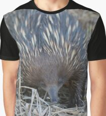 Sunset Anteater  Graphic T-Shirt