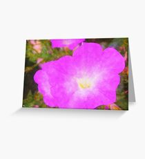 Pink Petunia Greeting Card