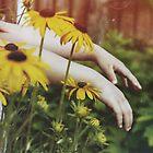 Summertime by Grace Kwan