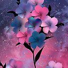 Cosmic Flower by Stephanie Rachel Seely