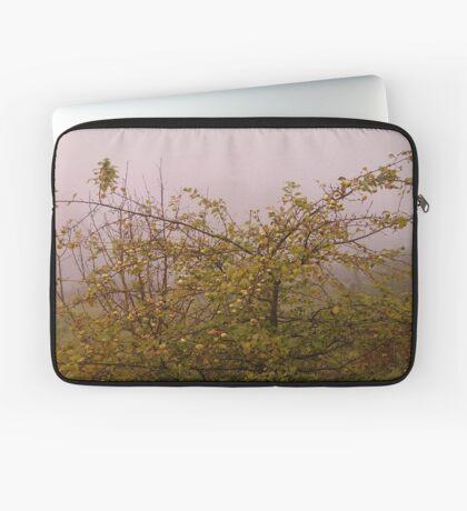 Foggy morning apple tree Laptop Sleeve