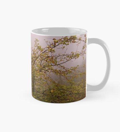 Foggy morning apple tree Mug