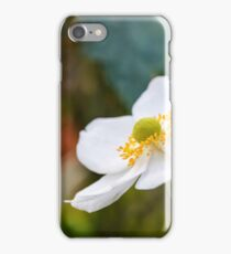 White Anemone  iPhone Case/Skin