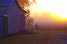 Dawn on the old barn by Penny Kittel