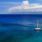 Snorkeling In Maui by James Eddy