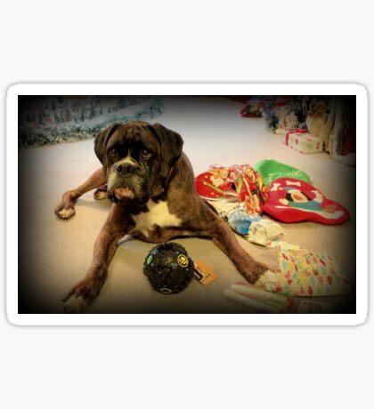 Ist das ein anderes Weihnachtsgeschenk für mich? - Boxer-Hunde-Reihe Sticker